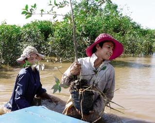 Nông dân Hải Phòng trồng rừng ngập mặn.